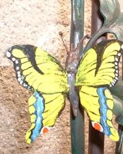 Schmetterling geschmiedet